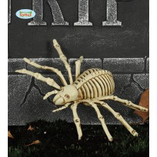 Kostra pavúka 24 cm