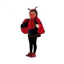 Detský kostým Lienka