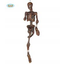 Skeleton 100cm