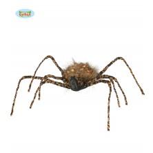 Tigrovitý pavúk 50 cm