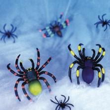 Pavučina s pavúkmi