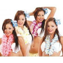 Hawajský veniec sort.