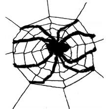 Obrie sieť s pavúkom 240 x 240cm