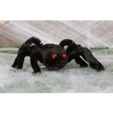 Veľký pavúk s červenými očami
